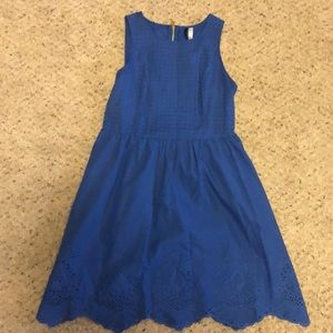 Kensie blue eyelet dress with gold zipper